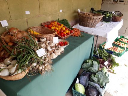―NPOが農地管理に果たす役割と可能性―(2019)