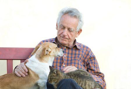 スペイン/高齢者へのアニマルセラピーのメリット