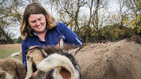 フラッシュ・ファームでの動物セラピーは、行動や精神衛生上の問題を持つすべての年齢層の人々を支援している